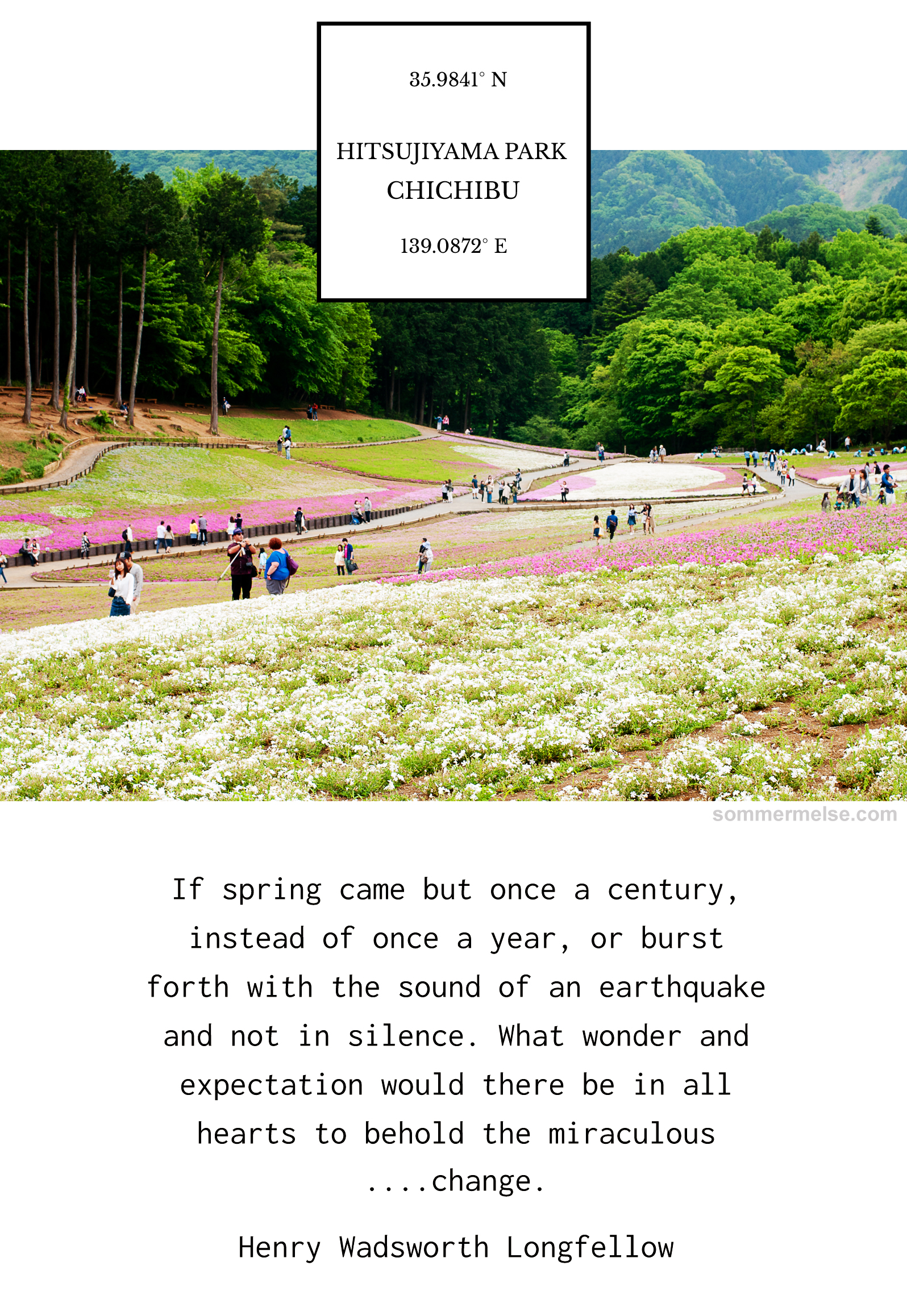 71_finding_wonder_spring_quote_henry_wadsworth_longfellow_hitsujiyama_japan