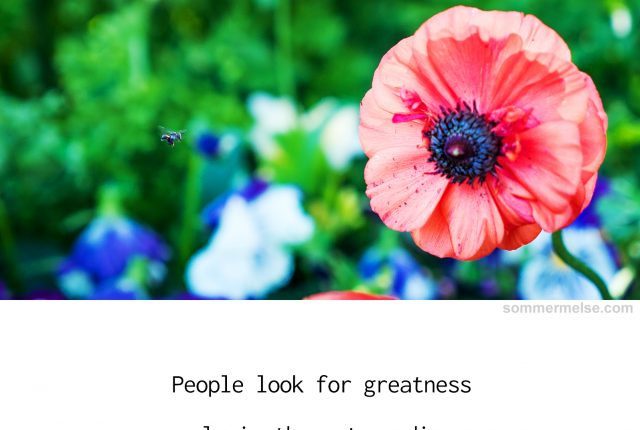 97_finding_wonder_people_look_for_greatness_only_wonder_ann_tatlock